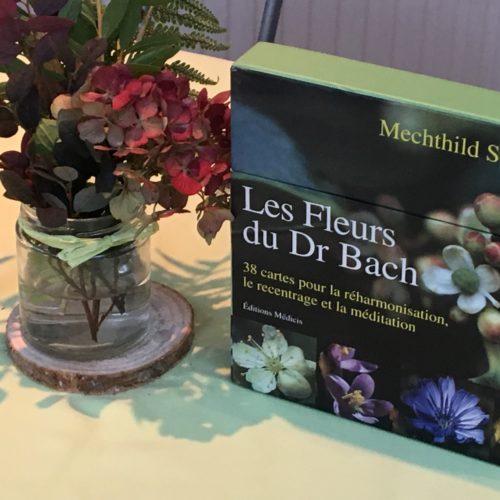 stage-fleurs-de-bach
