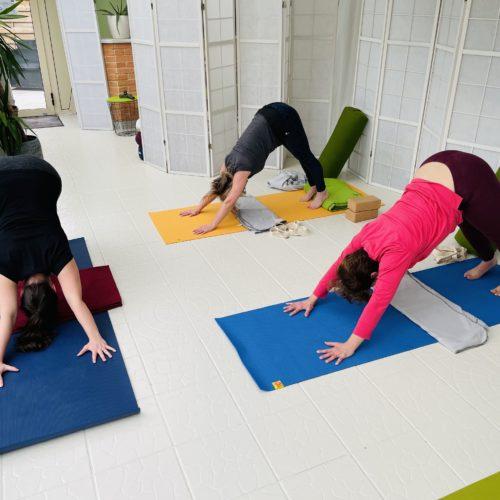 cours-de-yoga-adultes